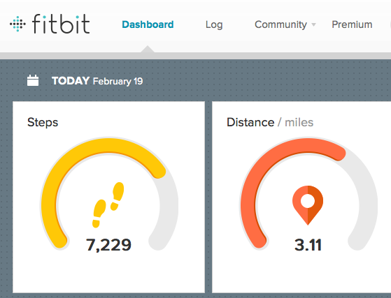 Thea Newcomb - Fitbit Flex - Dashboard Feb 19
