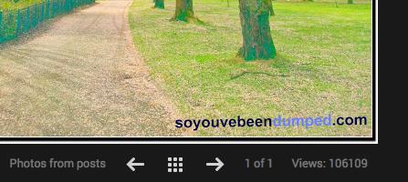 Views of Revenge post on Google Plus - now oever 106,000